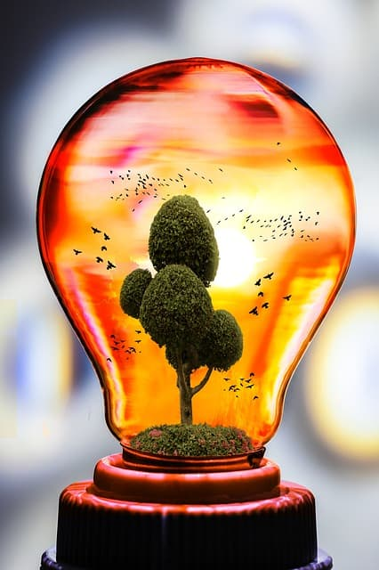 Sustainable Living Ideas - Energy Efficiency