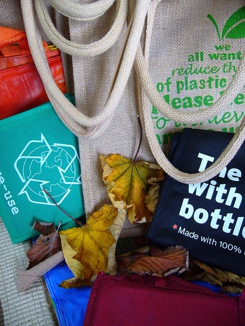 Sustainable Living Ideas - Reusable Bags